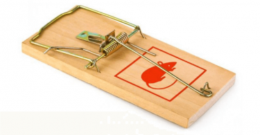 effective mousetrap